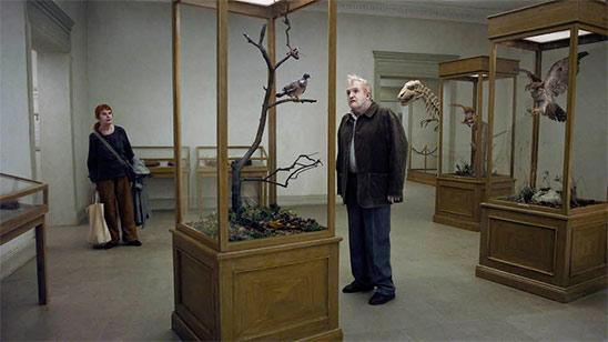 Un pigeon perché sur une branche